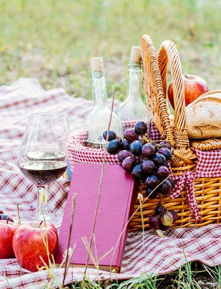 El picnic perfecto