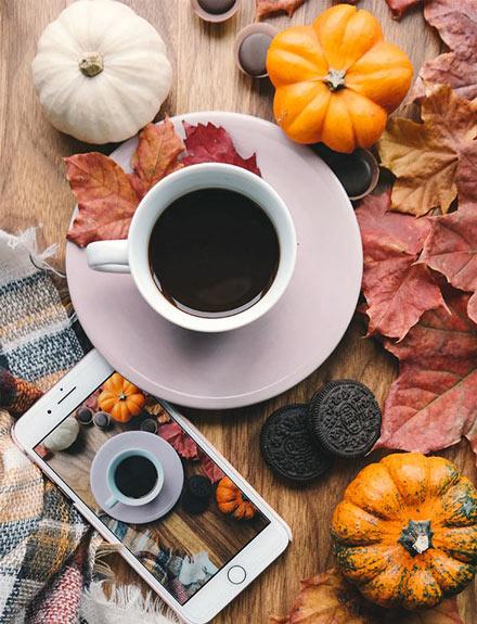 6 alimentos de temporada imprescindibles que comer en otoño